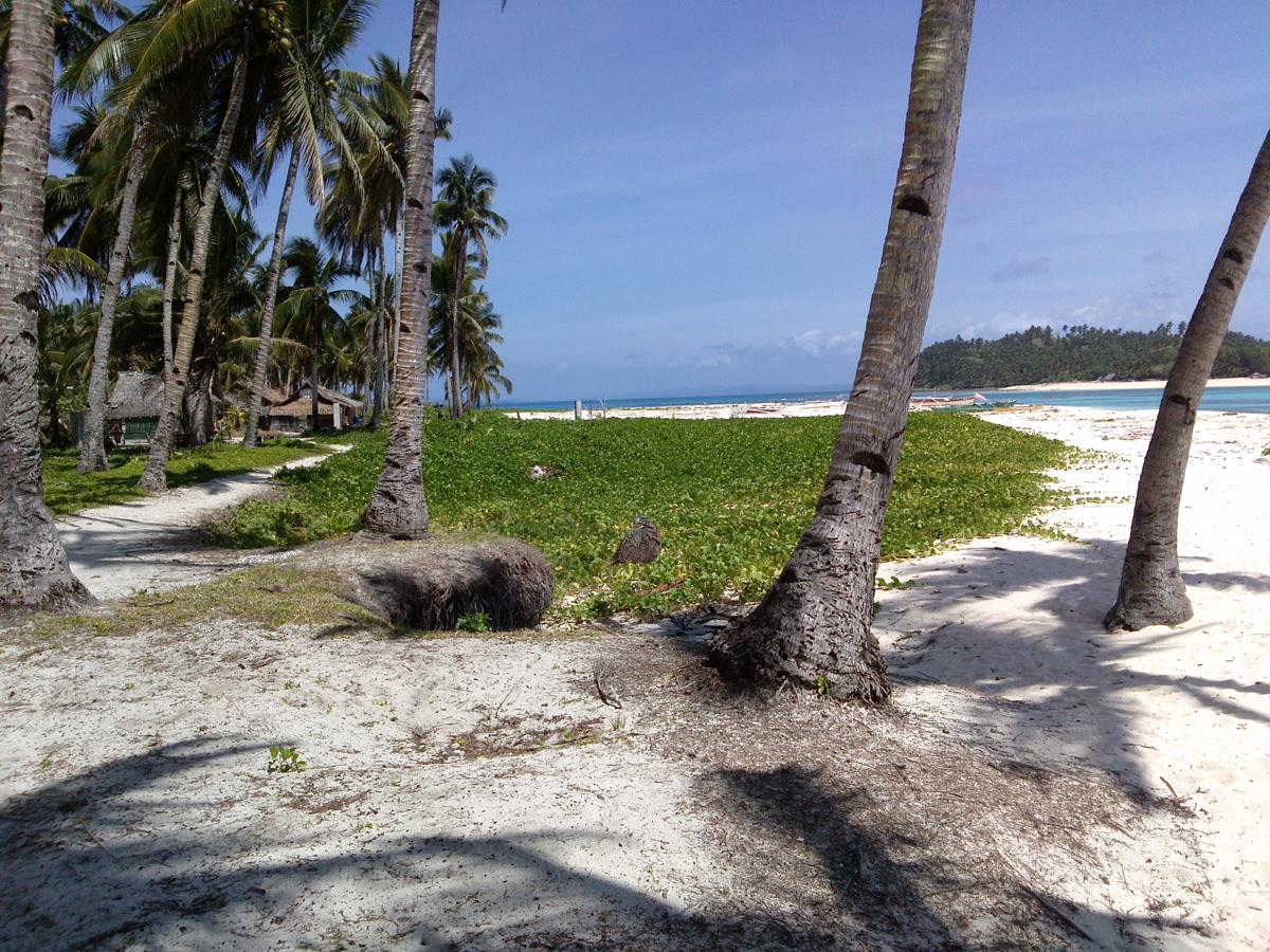 Paradise location